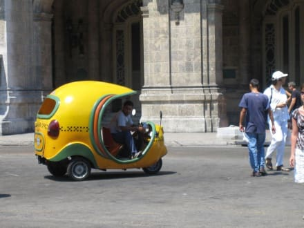 Coco Taxi - Transport