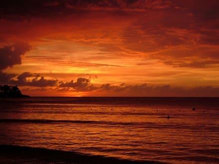 Sonnenuntergang - Strand Negril
