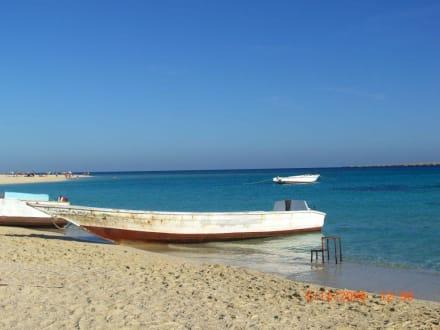 Tolles Motiv - Giftun / Mahmya Inseln