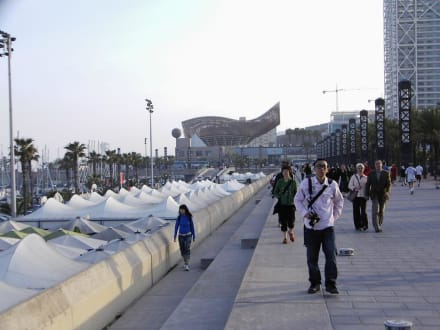 Barceloneta - Barceloneta