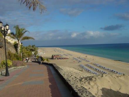 Der Strand - Strand Jandia