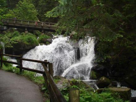 Hoch hinaus! - Triberger Wasserfälle