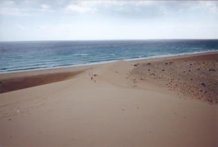 Düne am Playa Barca, Fuerteventura - Playa Barca