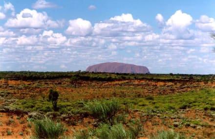 Uluru - Ayers Rock / Uluru