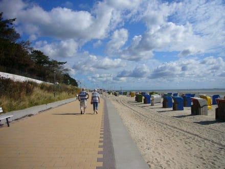 promenade in wyk bild strandpromenade wyk auf f hr in. Black Bedroom Furniture Sets. Home Design Ideas