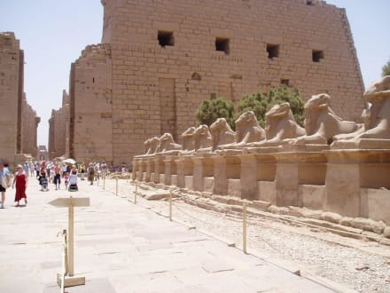Ausflug nach Luxor:Tempel von Karnak - Amonstempel Karnak