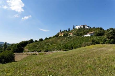 Schloss Kapfenstein in der Region Bad Gleichenberg - Schloss Kapfenstein