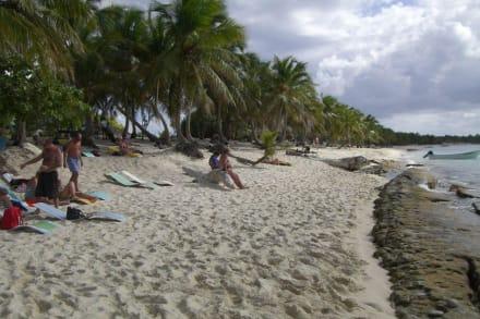 Tauchpause auf der Insel - Unterwasser