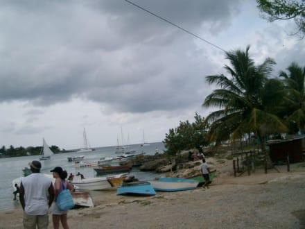 hafen bayahibe - Isla Saona