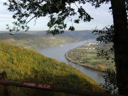"""Hamm Blick"" hinter der Bergstation Sessellift - Vierseenblick"