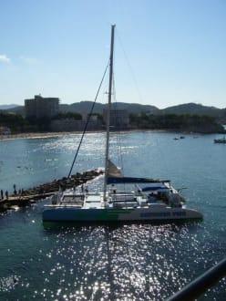 Partyboot - Cormoran Vent