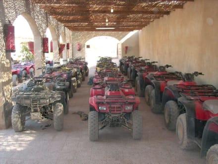 Ausflug - Quad Tour Hurghada