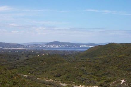 Blick auf Albany - Albany Wind-Farm
