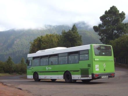 Mit diesem Bus kann man hinfahren - La Caldera
