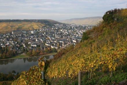 Blick auf Kues - Burg Landshut