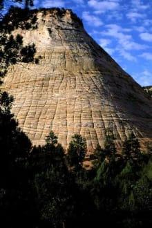 Checkerboard Mesa - Zion Nationalpark