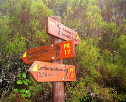 Vielfältige Wandermöglichkeiten - Madeira Wandern mit Christa