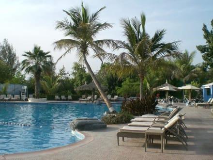 Room photo 18 from hotel El Nahda Resort & Spa