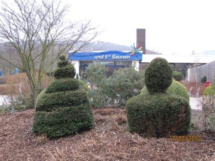 Weg zum Solebad - Solebad Bad Salzdetfurth