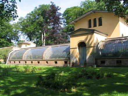 Orangerie - Jagdschloss Glienicke Berlin
