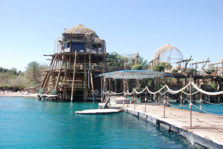 Sights (other) - Dolphin Reef Eilat