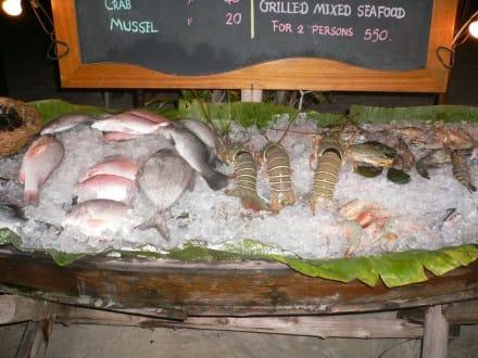 Beach Love - Jellyfish Food:Bar ex Restaurant Beach Love