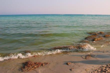 Nissi Beach - Nissi Beach