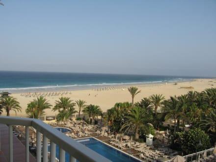 Strand - Hotel Riu Oliva Beach & Village Resort
