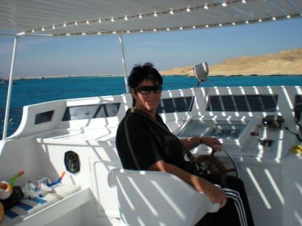 Hab auch Bootsführeschein! - Giftun / Mahmya Inseln