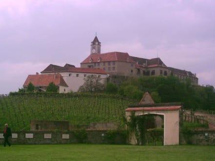 Blick von unten - Burg Riegersburg