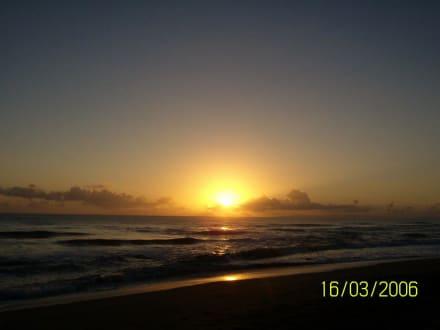 ein neuer Tag erwacht 2 - Playa Camino