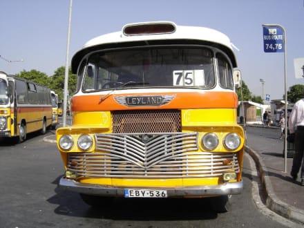 Malta Bus - Transport