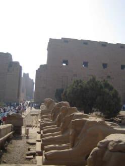 Der Eingangsbereich vom Karnak Tempel - Amonstempel Karnak