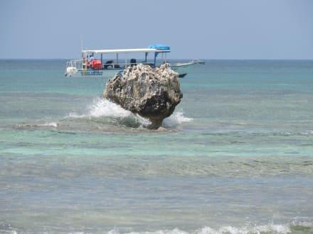 Booby Cay - Insel Booby Cay