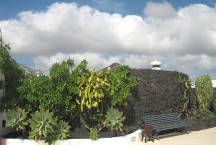 Ruheplatz im Garten - Fundacion Cesar Manrique