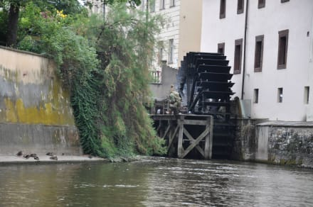 Sonstige Sehenswürdigkeit - Mittelalterliche Wassermühle