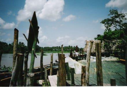 Orinoco Delta Lodge - Orinoco Delta