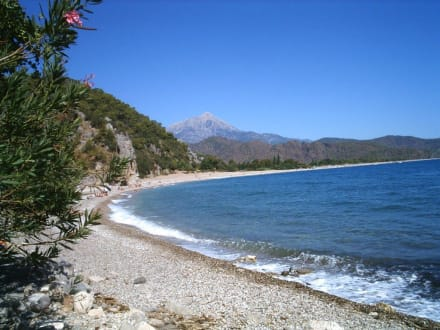 Strand von Olympos - Strand Cirali