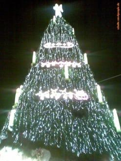 Weihnachtsbaum ´08 - Weihnachtsmarkt Dortmund