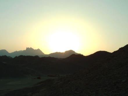 Sonnenuntergang in der Wüste - Quad Tour Hurghada