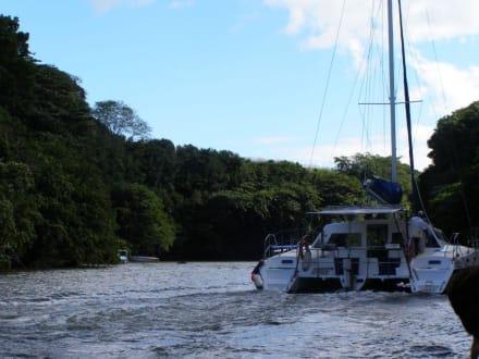 Aguas (río/lago/catarata) - Río Beau Champ