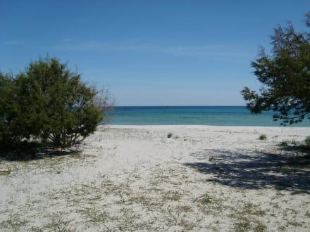Strand Cala Ginepro - Küste