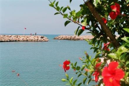 Hafenanlage - Hafen Side