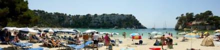 Panorama Strand von Cala Galdana - Strand Cala Galdana