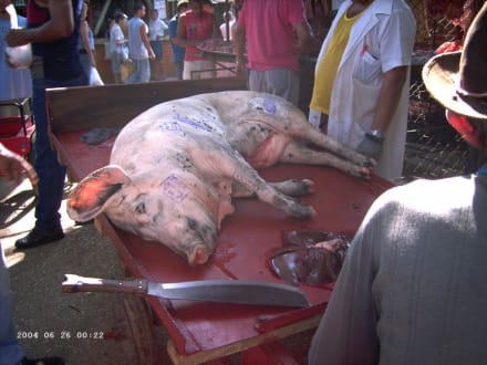 Markt in Camagüey - Mercado Agropecuario El Rio