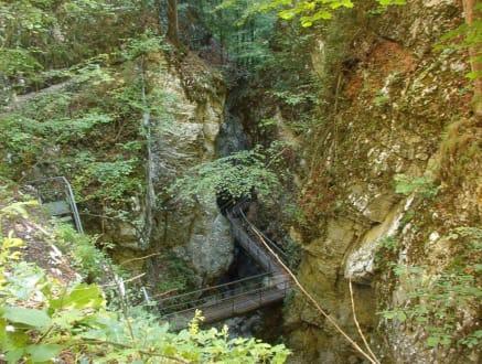 Teufelsschlucht ... - Nationalpark Risnjak