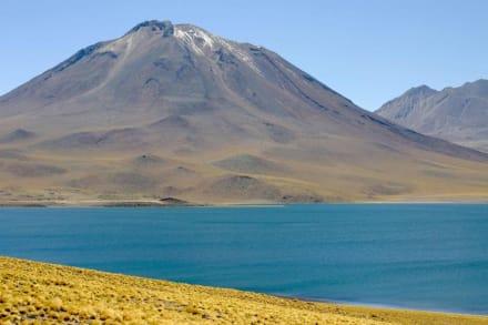 Laguna Miscanti, Vulcano Miscanti - Laguna Miscanti