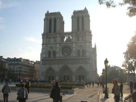 Notre Dame - Notre Dame