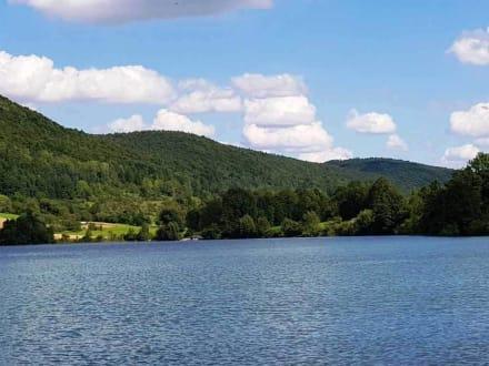 Der See in voller Pracht  - Happurger Stausee
