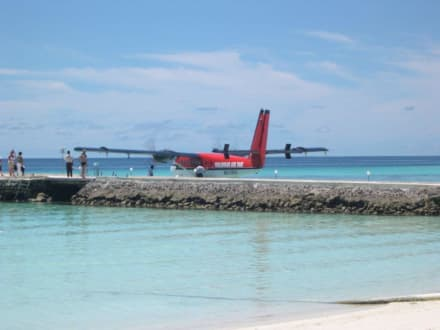 Wasserflugzeug am Landungssteg - Schnorcheln Hausriff Summer Island Village Nord-Malé-Atoll